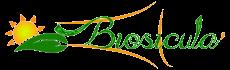 logo-biosiculà_trasparente_piccolo