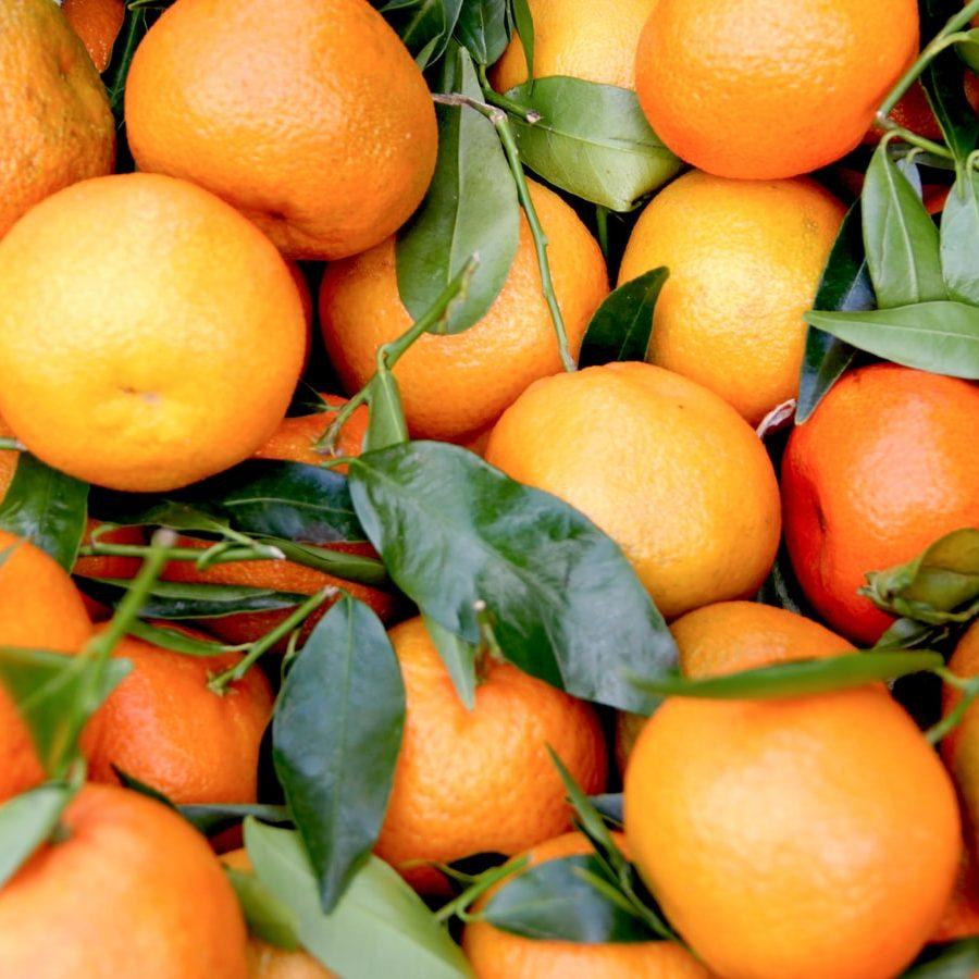 clementine_eticmiam_NL6